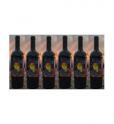 Viña Desgracia 2017 Tempranillo - Pack 6 botellas  (Servicio directo desde la bodega, portes incluidos)