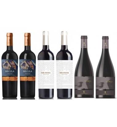 *PACK BLACKFRIDAY Bodegas Castaño 6 botellas - Vino Tinto, Yecla