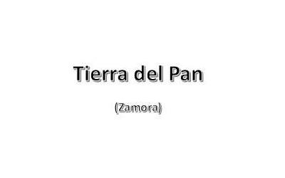Tierra del Pan (Zamora)